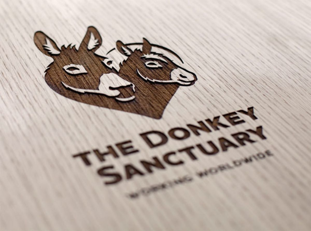 The-donkey-sanctuary-logo-01